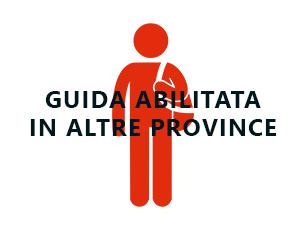 TECNICO QUALIFICATO GUIDA TURISTICA PER GUIDE GIÀ ABILITATE